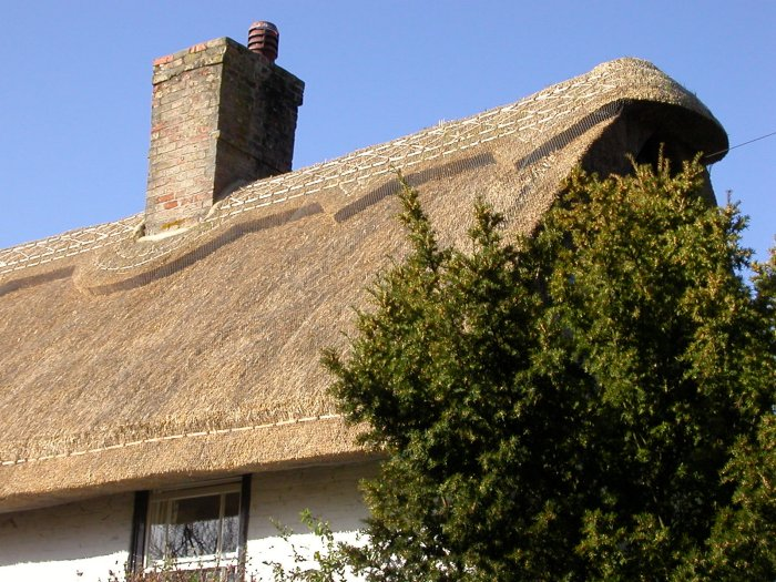 Pin thatch roof on pinterest - How to make a thatched roof ...